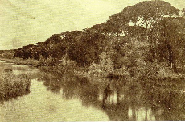 Questa immagine ha l'attributo alt vuoto; il nome del file è FOTO-ARTE-1-4-16.jpg