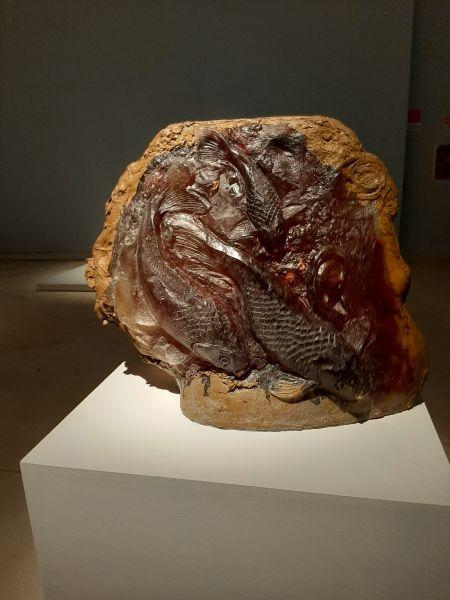 Questa immagine ha l'attributo alt vuoto; il nome del file è Anatomia-Ceramica-2.jpg