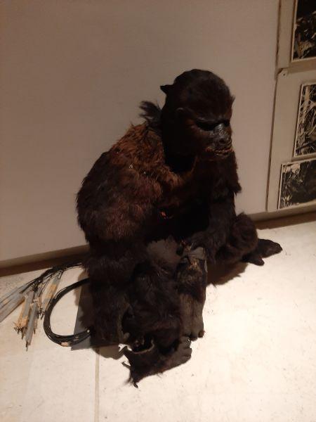 Questa immagine ha l'attributo alt vuoto; il nome del file è Rambaldi-2-King-Kong-2.jpg