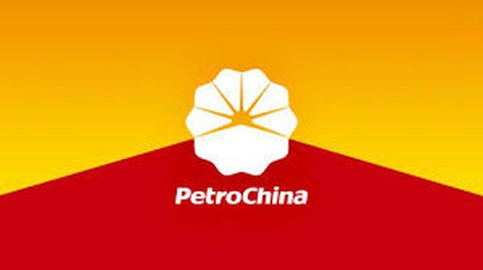 Questa immagine ha l'attributo alt vuoto; il nome del file è Petrochina-2.jpg