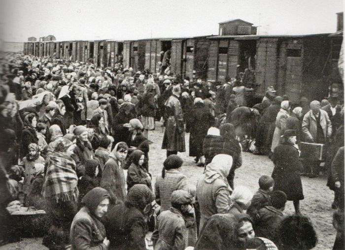 Questa immagine ha l'attributo alt vuoto; il nome del file è Ausch-III-131-b-foto245.jpg