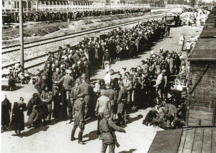 Questa immagine ha l'attributo alt vuoto; il nome del file è Ausch-III-132-foto2.jpg