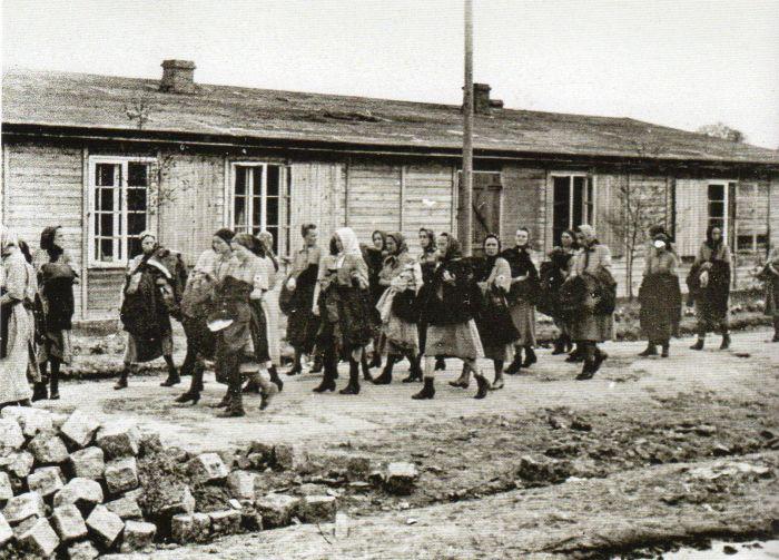Questa immagine ha l'attributo alt vuoto; il nome del file è Ausch-III-160-foto263.jpg