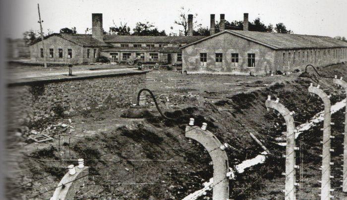 Questa immagine ha l'attributo alt vuoto; il nome del file è Ausch-III-167-bis-foto269.jpg