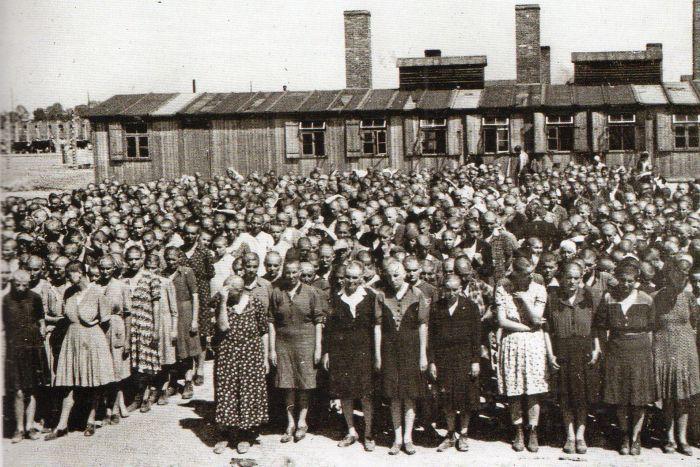 Questa immagine ha l'attributo alt vuoto; il nome del file è Ausch-IV-177-foto.jpg