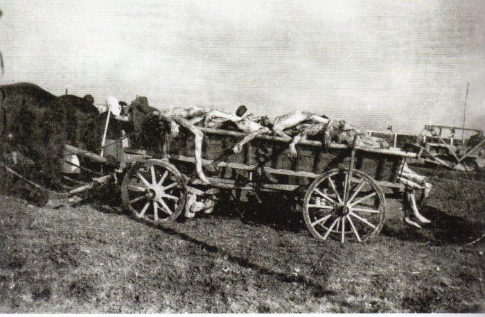 Questa immagine ha l'attributo alt vuoto; il nome del file è Ausch-IV-236-bis305-1.jpg