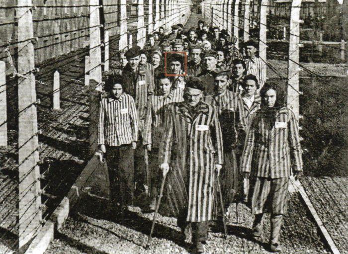 Questa immagine ha l'attributo alt vuoto; il nome del file è Ausch-IV-236304.jpg