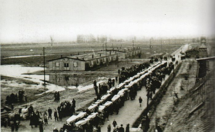 Questa immagine ha l'attributo alt vuoto; il nome del file è Ausch-IV-244308.jpg